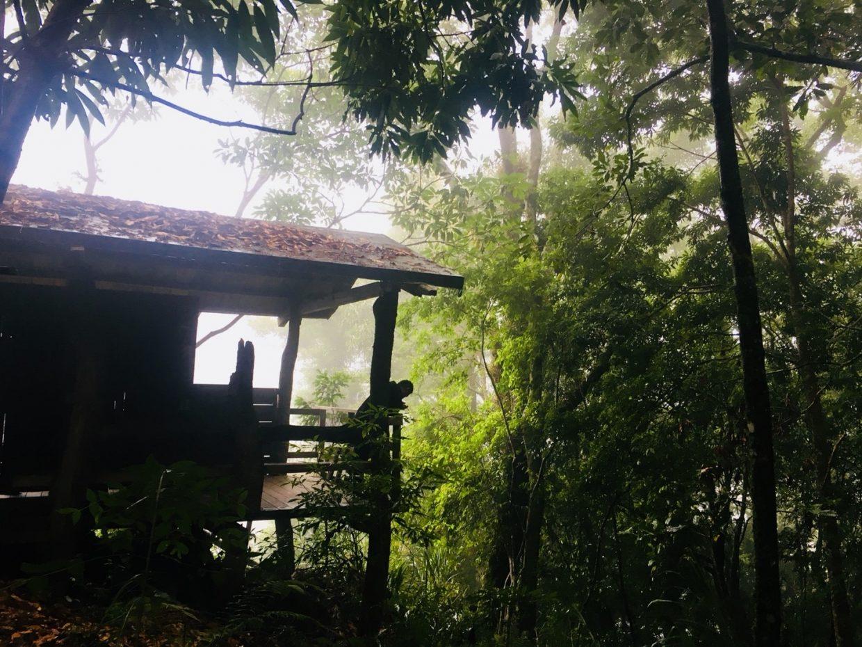神木步道第一處高山景觀廁所