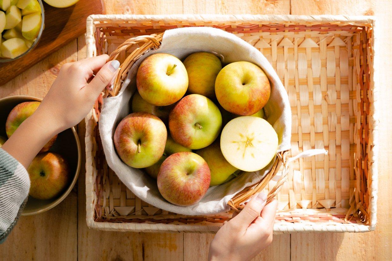 ▲ 法式蘋果塔食材準備。