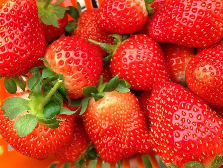 ▲ 草莓是秋冬讓人甜蜜醉心的水果,一口咬下酸甜多汁,很適合拿來做甜點。