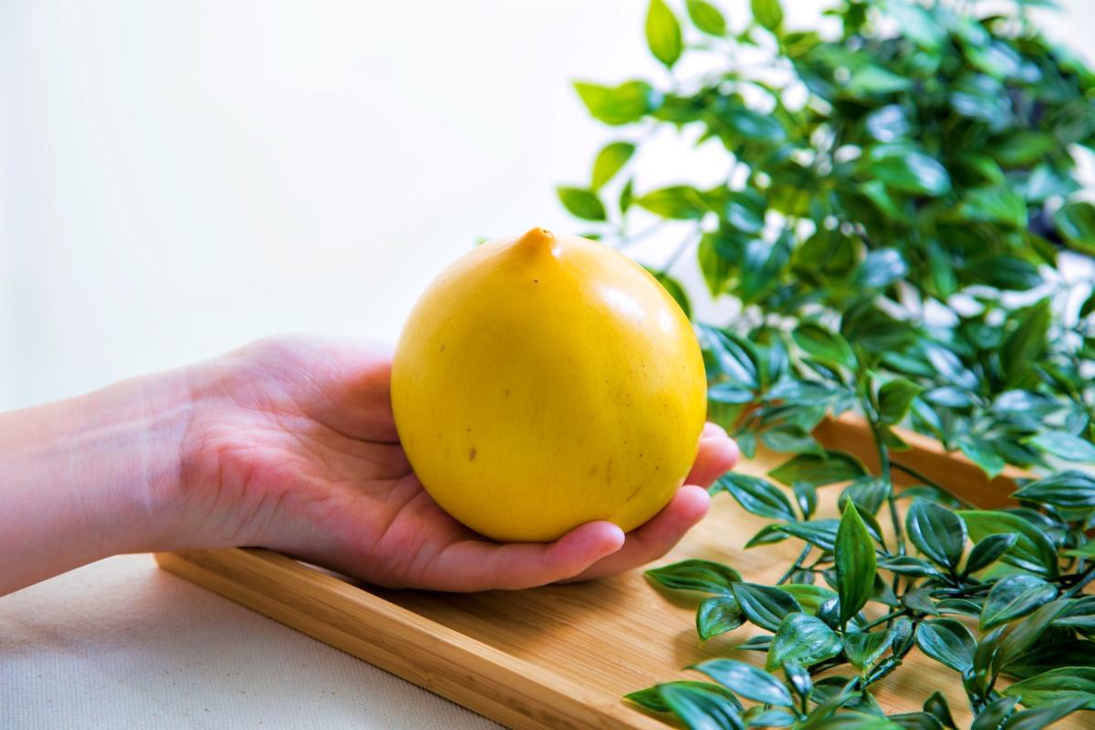 黃金果食後感!超神奇的滋味,用哪個溫層最好吃?