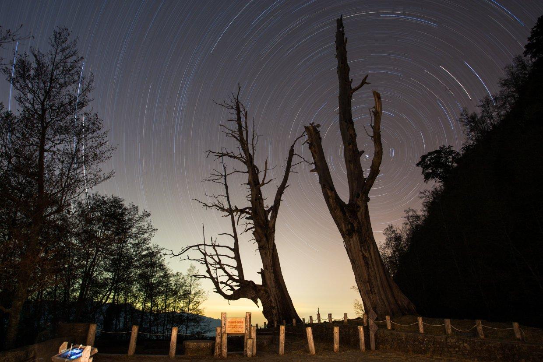 玉山塔塔加夫妻樹的星空