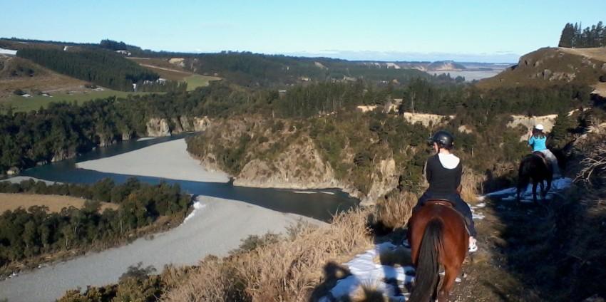 騎馬遊山林