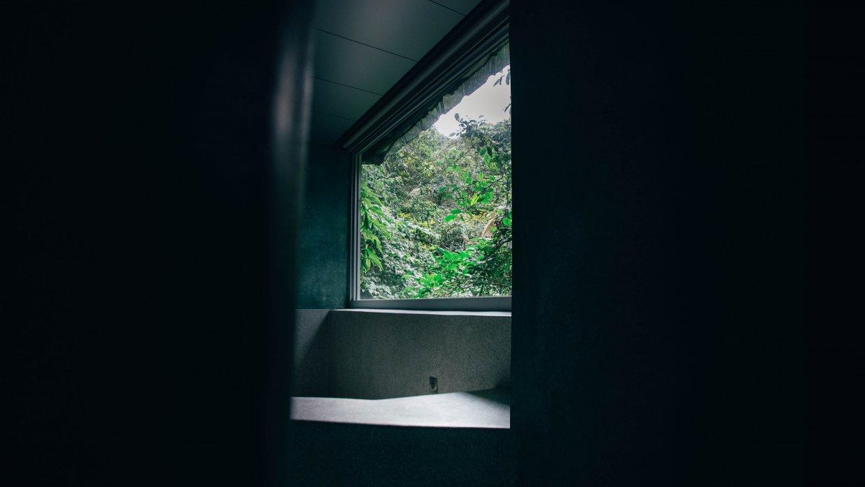 走進衛浴空間,只剩下猖狂一色的綠