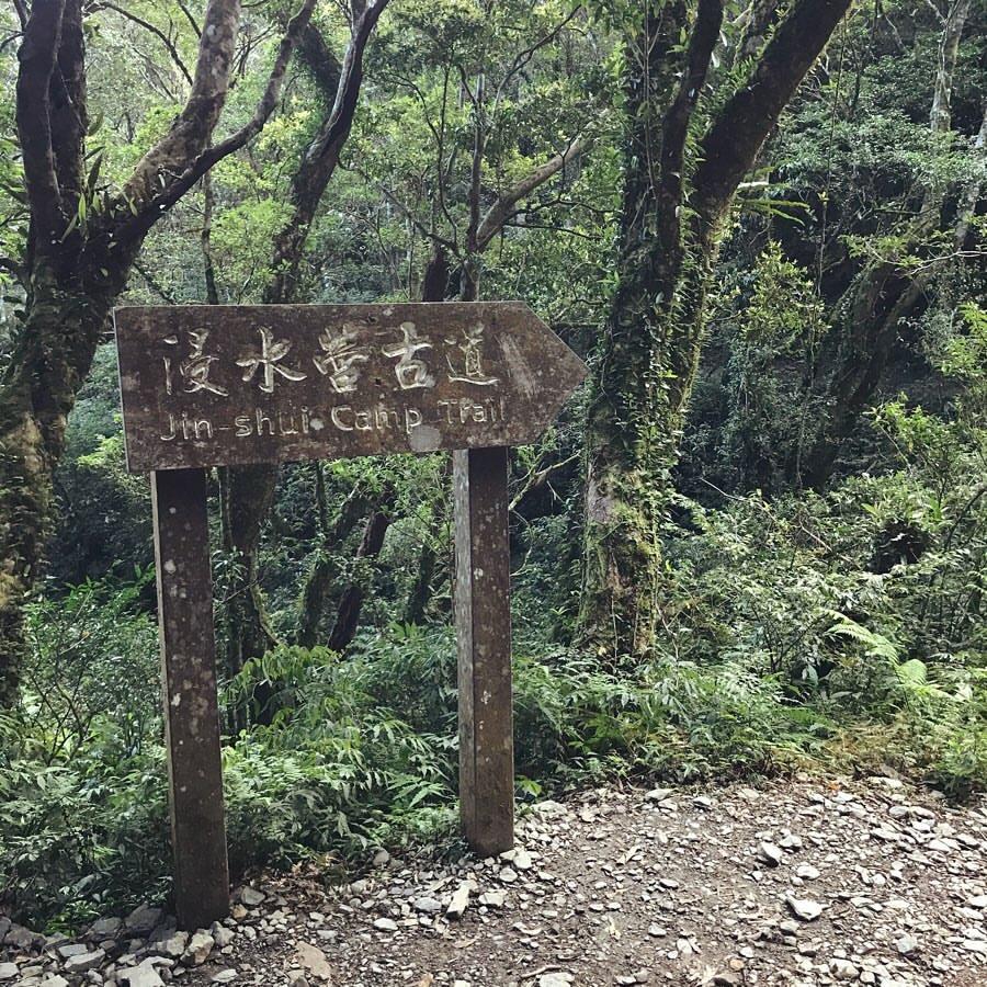 屏東「拾美步道群」介紹|屏東10條森林秘境登山步道介紹看這篇