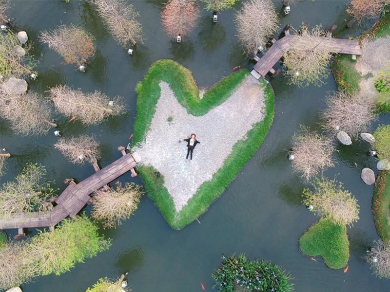 雲林火紅「湖中愛心島」超浪漫!園區還有絕美落雨松免費欣賞