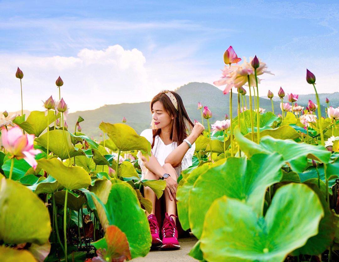 金山清水濕地@jiying Tseng