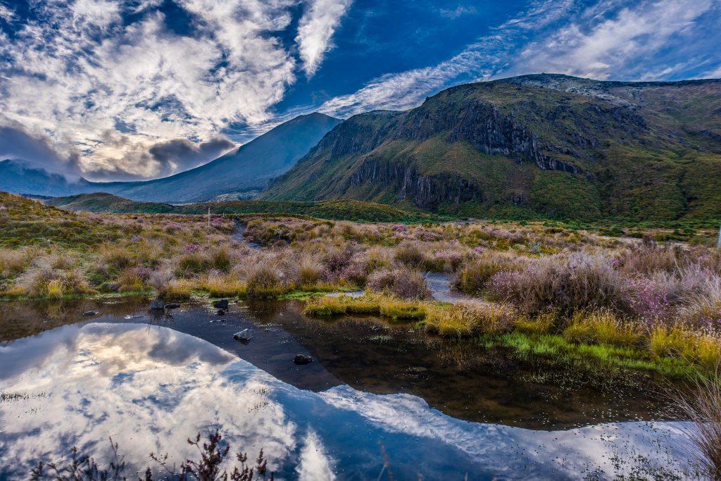 紐西蘭自由行懶人包|征服紐西蘭南北島 必玩景點推薦15選!