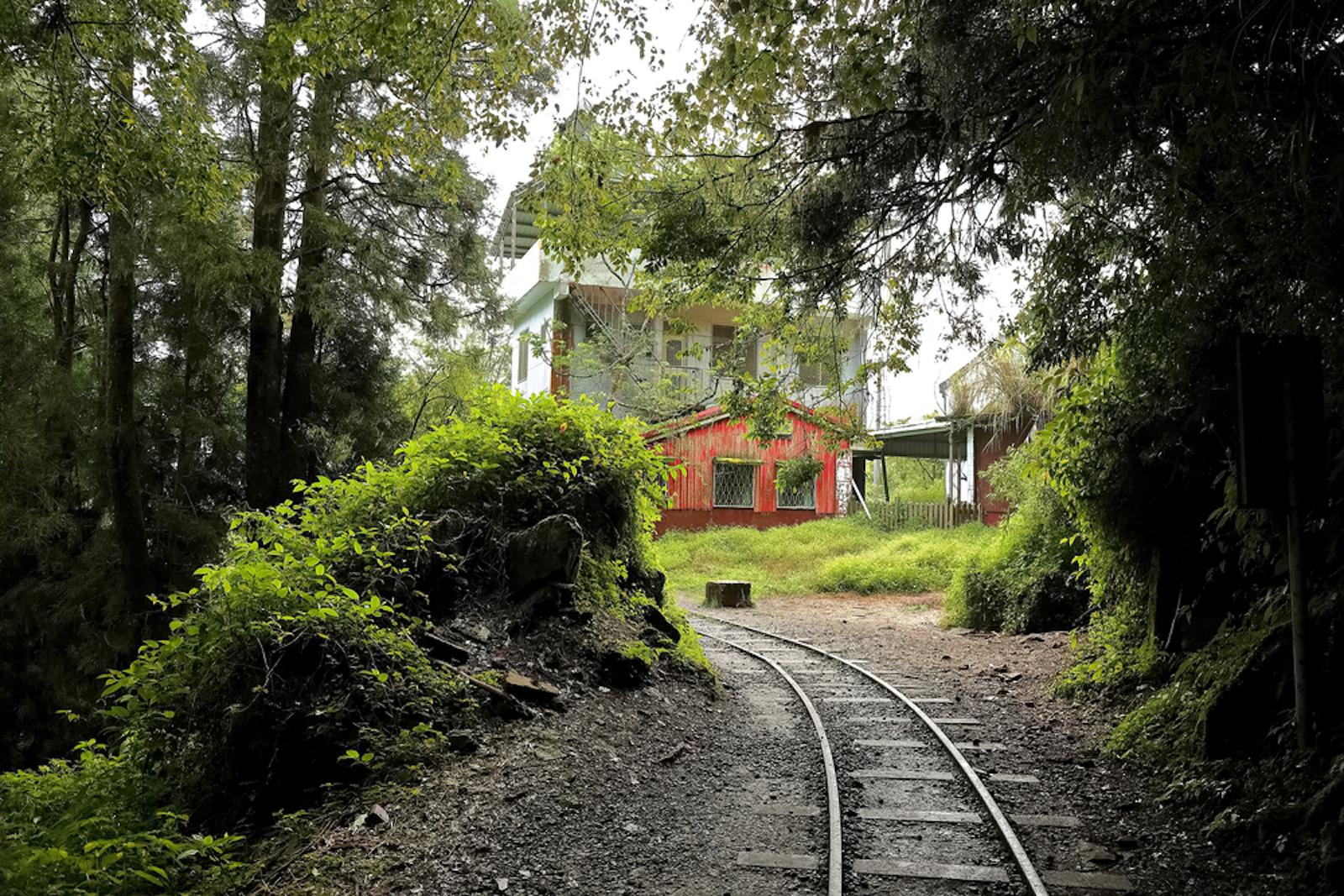 最美森林鐵道步道大集合!走入鐵軌森林步道一窺超夢幻景色