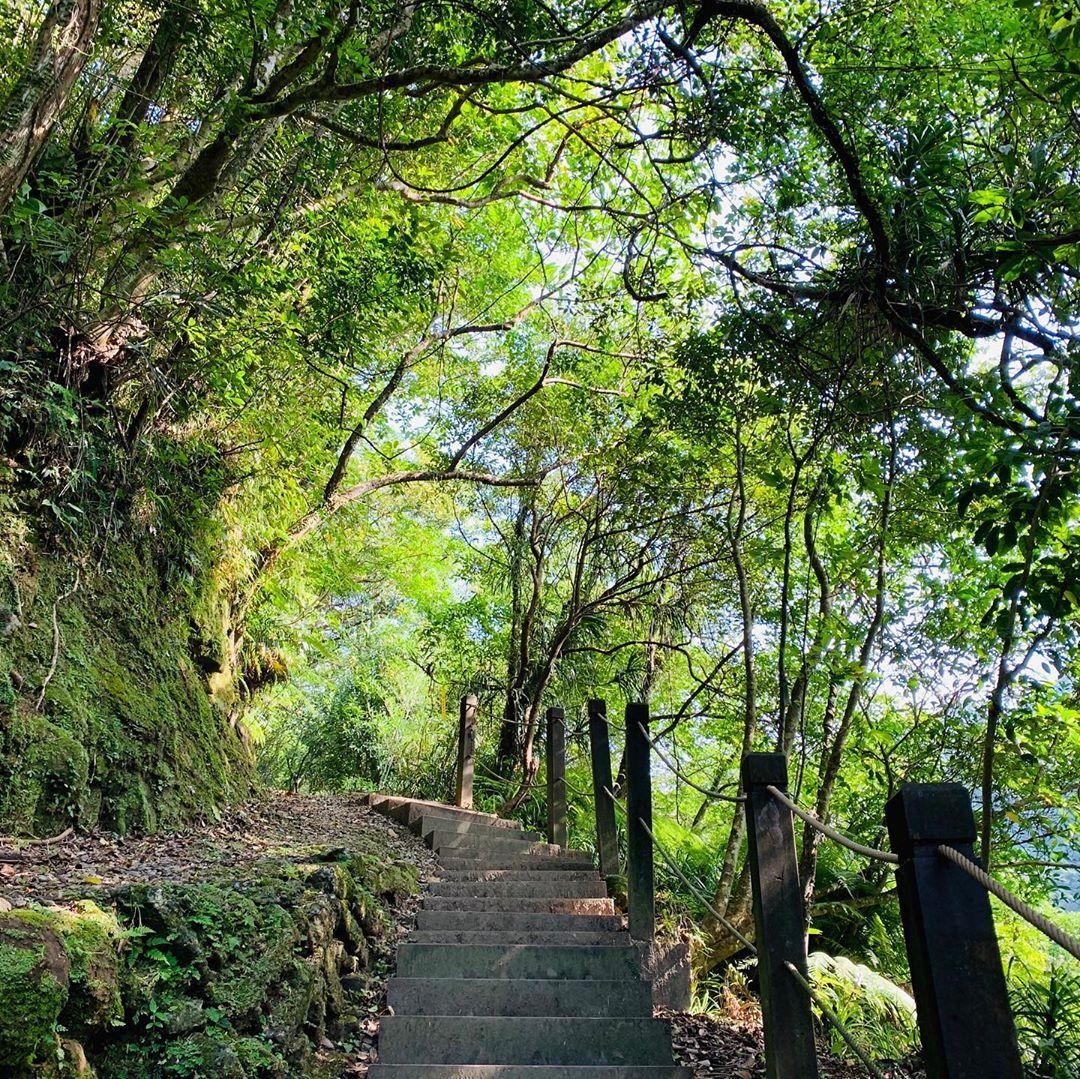 9條不能錯過的新北網美登山步道 跟著網紅走進新北登山步道!