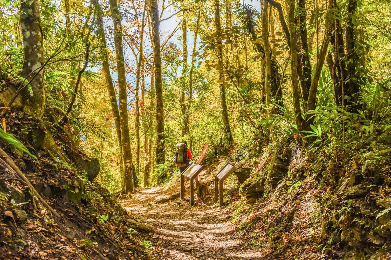 【圖十】奧丁丁體驗秋季山林路線推薦TOP4-霞喀羅古道全線