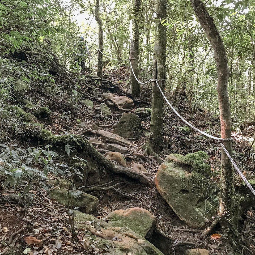 苗栗步道這樣走!6條苗栗登山步道報你知,包括「台版大峽谷」