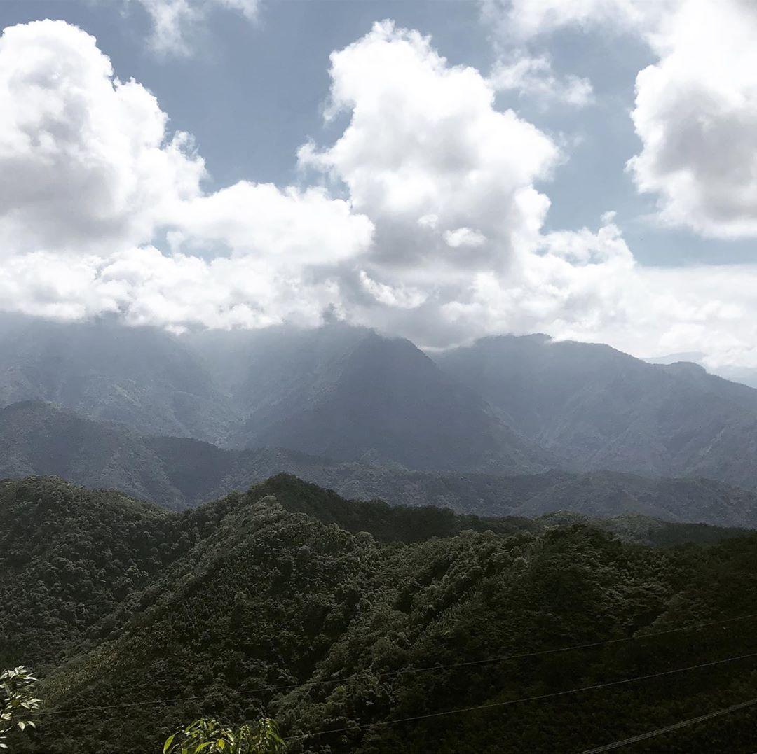 爬百岳前先來這7條南投森林步道!南投7條新手也能走的步道