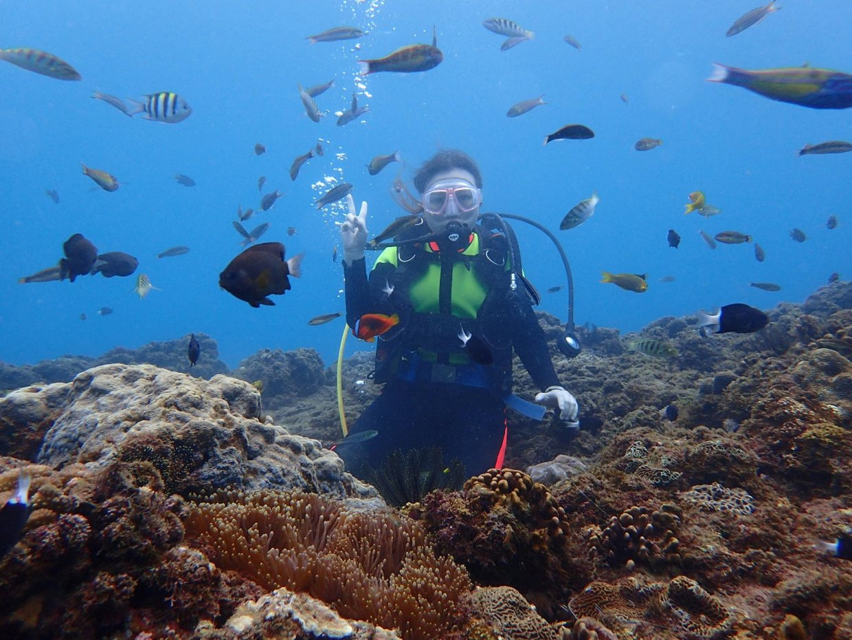 誰說冬天不能潛水?全台冬季也可以潛的潛點看這篇!