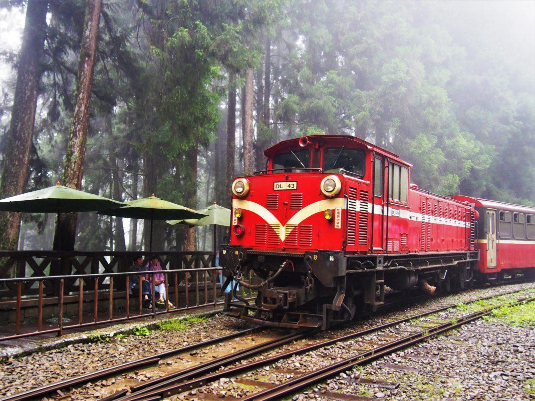 阿里山交通:一篇搞懂怎麼去!阿里山小火車、觀巴、自駕懶人包