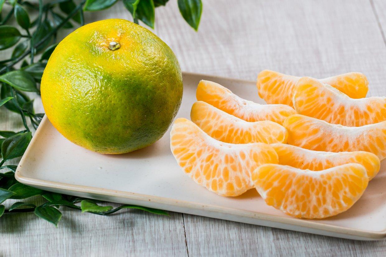 椪柑是常見的橘子品種