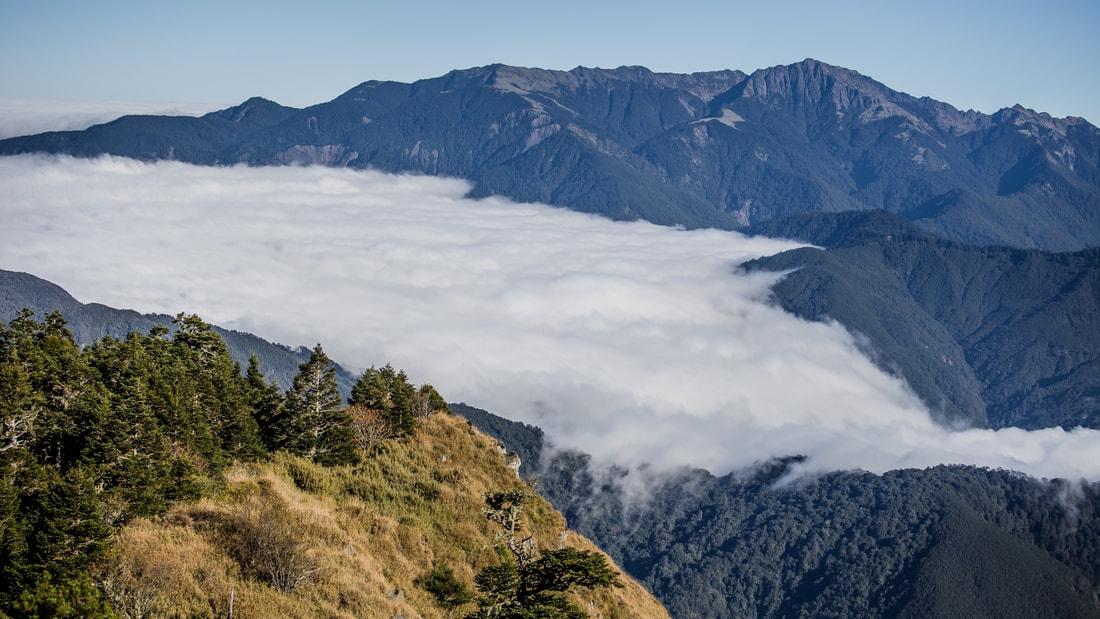 後疫情山林國旅夯 奧丁丁體驗推山林跨年行程 訂單激增去年兩倍