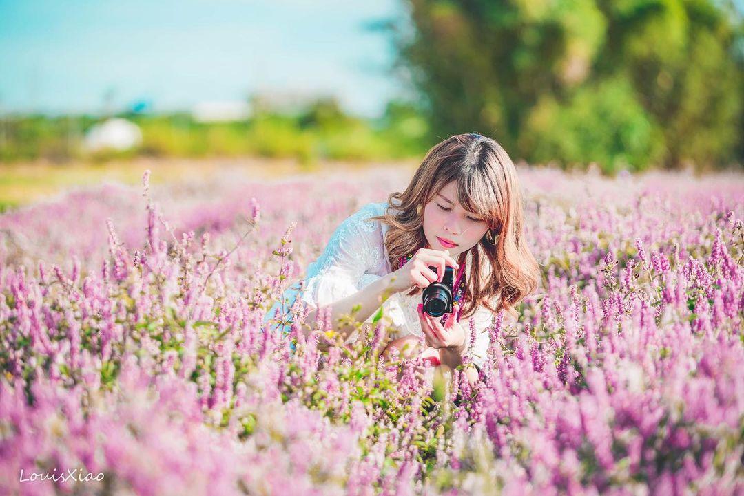 紫色仙草花 遠拍近拍皆美 @aaa123471