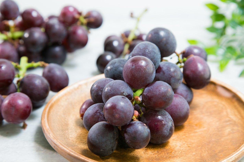 葡萄種類:巨峰葡萄