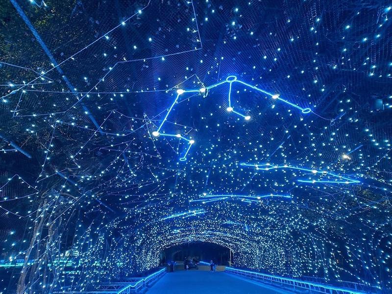 聖誕村下雪囉!來國境之南追極光,浪漫共逛雪國耶誕城