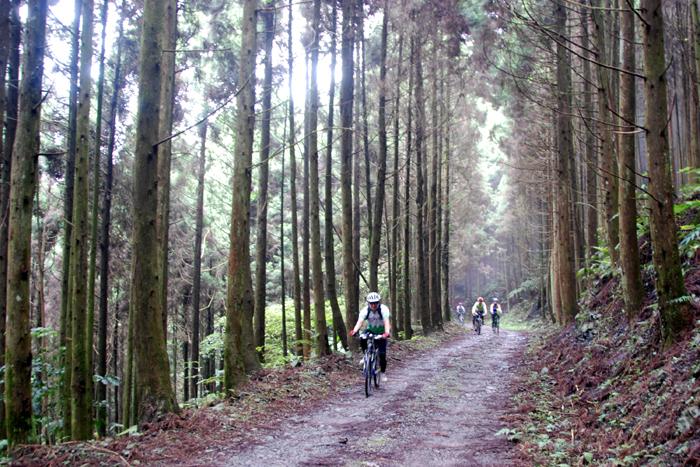 騎自行車遊台灣|雙輪帶你上山下鄉 深入走訪台灣各地美景
