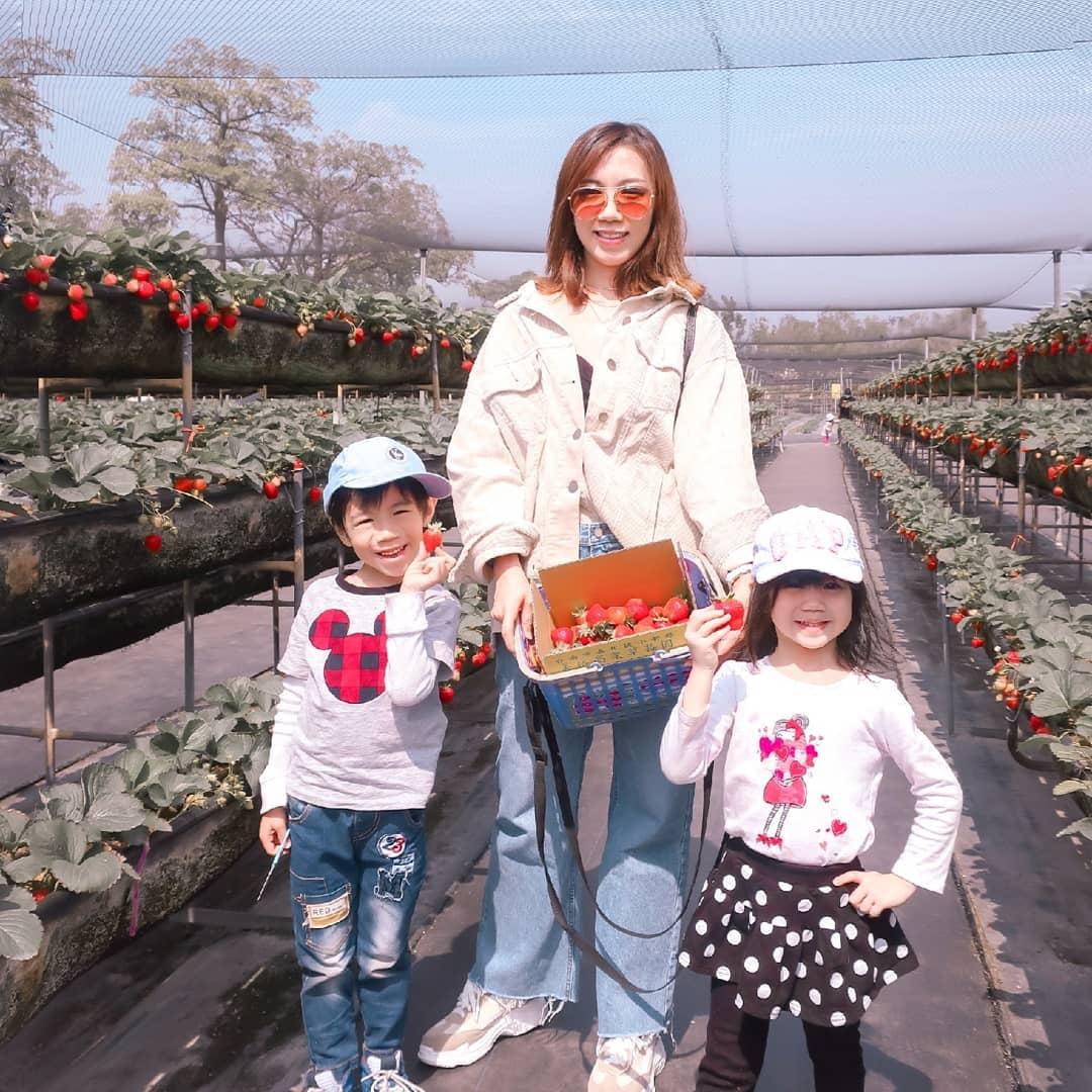 美裕草莓園 @josephine Hwang
