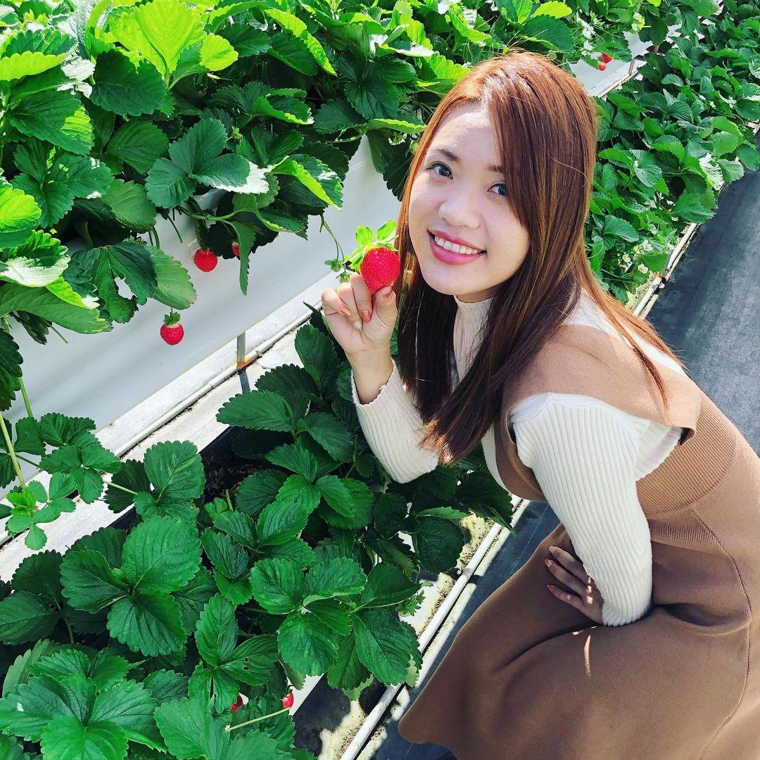 滿意牛奶蜜高架草莓園 @karol Xu 0825