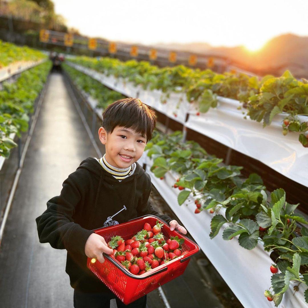 滿意牛奶蜜高架草莓園 @yuna Liu