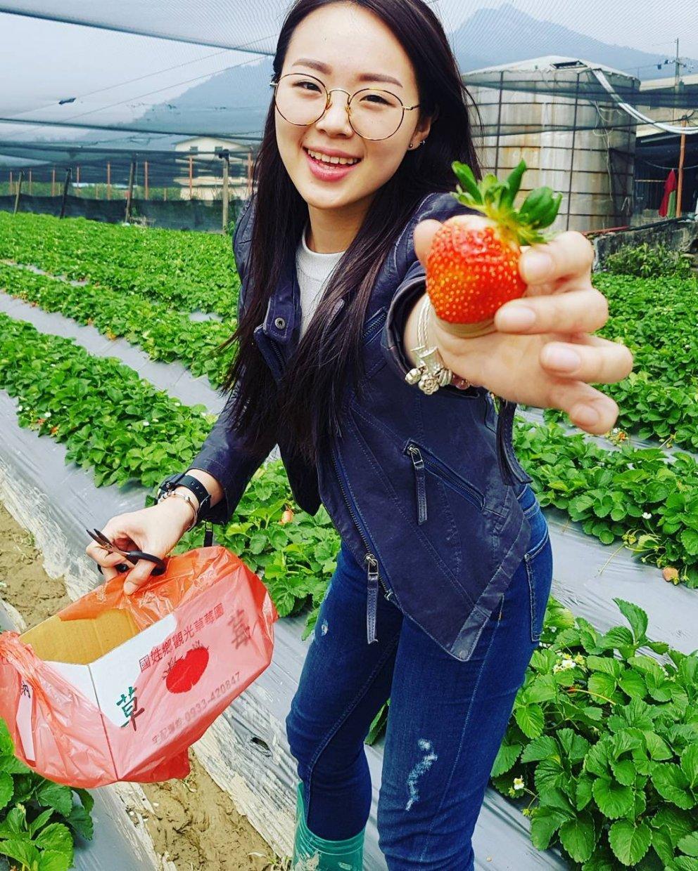 納豆草莓園 @t20030904