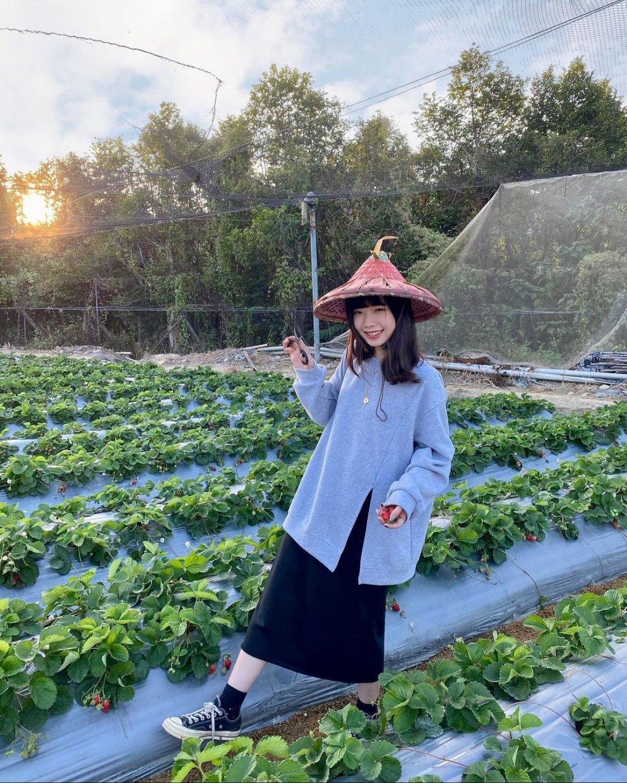 納豆草莓園 @qiong 22