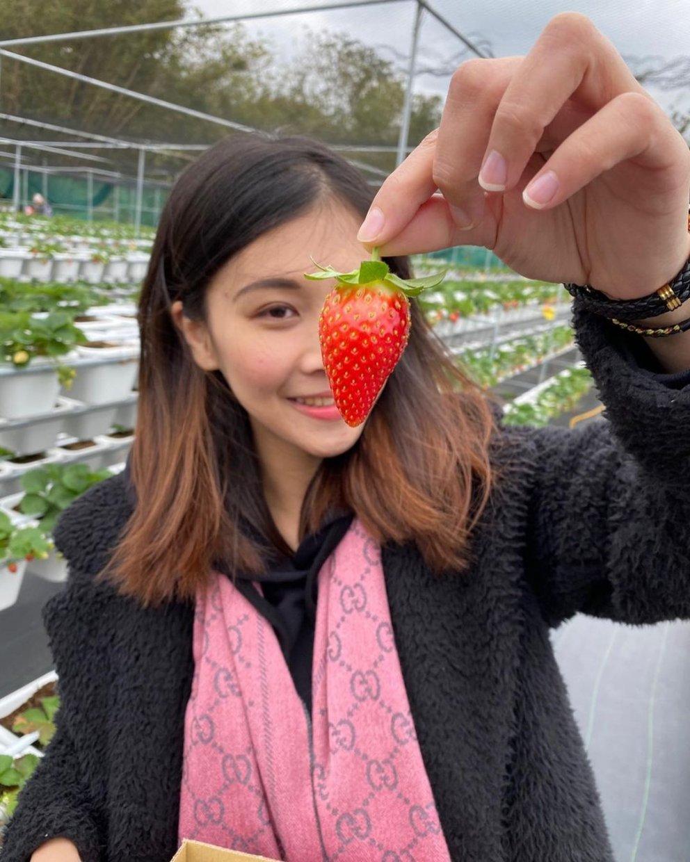 長鑫莓果農園 @tomi0216