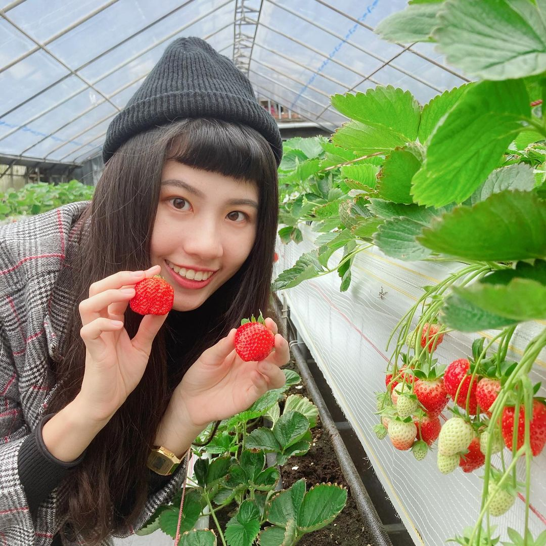 內湖草莓園 @iyoparsley