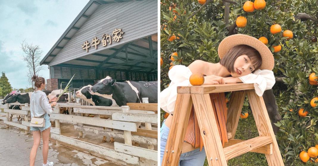 2021台灣中部走春景點|11個親子走春景點推薦 讓孩子放放電!