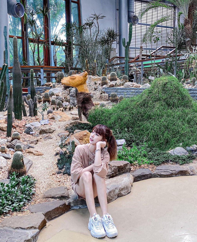 台北典藏植物園 @venus 66