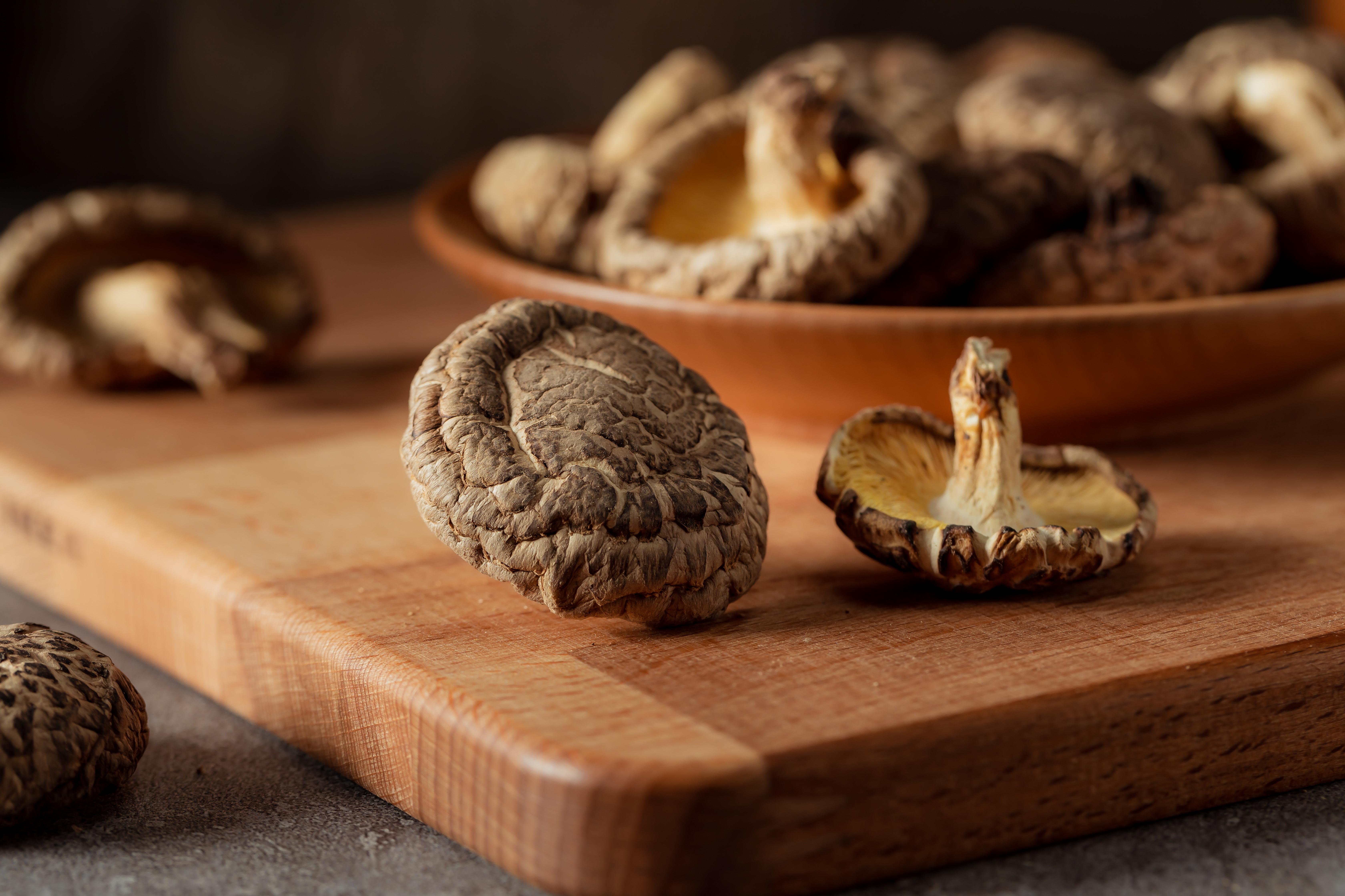 香菇種類大集合