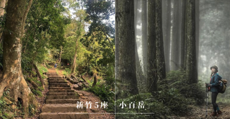 全台「小百岳」|新竹特輯:5座特色郊山推薦!拜訪山林間的古堡,從山頂眺望101