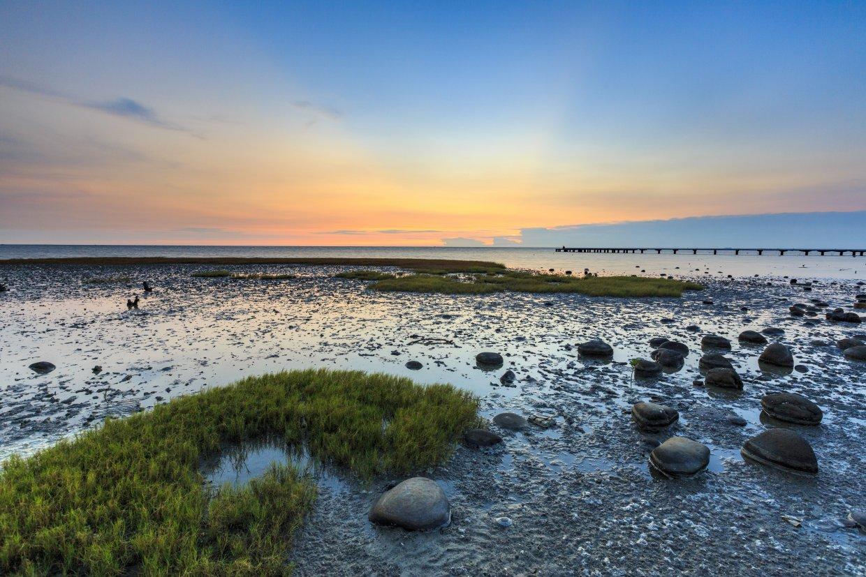 Sunset,In,Siangshan,Wetland,,Hsinchu,,Taiwan