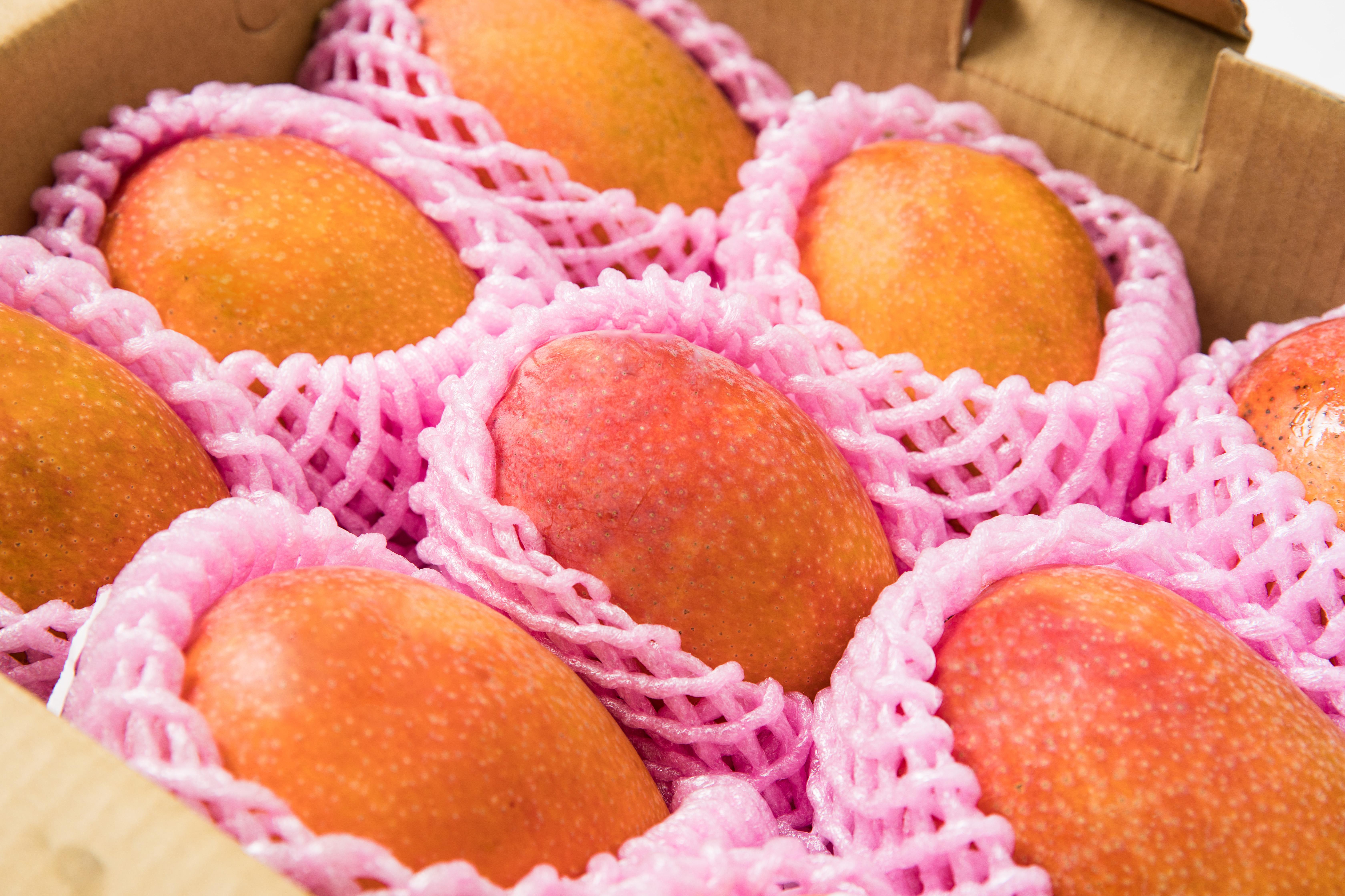 夏天就是要這樣吃芒果!三大超消暑芒果特殊吃法你一定要知道!