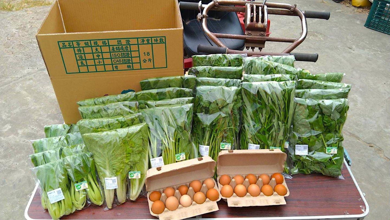 新鮮現採的有機蔬菜箱能一次備足一週所需的蔬菜份量