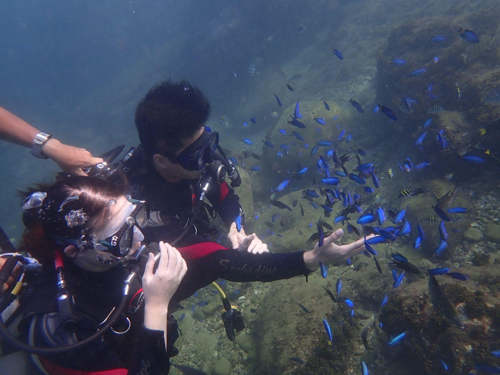 龍洞潛水6