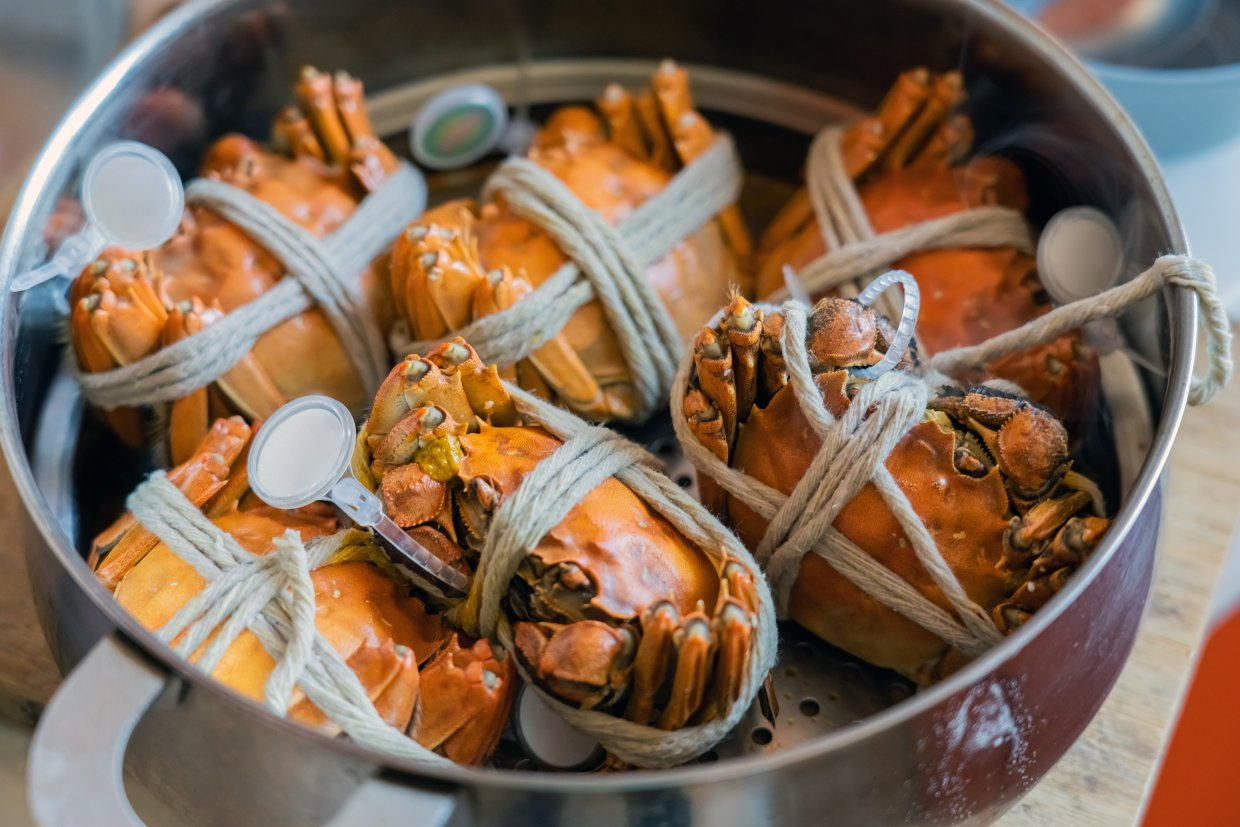 Steamed,Hairy,Red,River,Crab ,Tied,Crab,In,Steamer,Pot