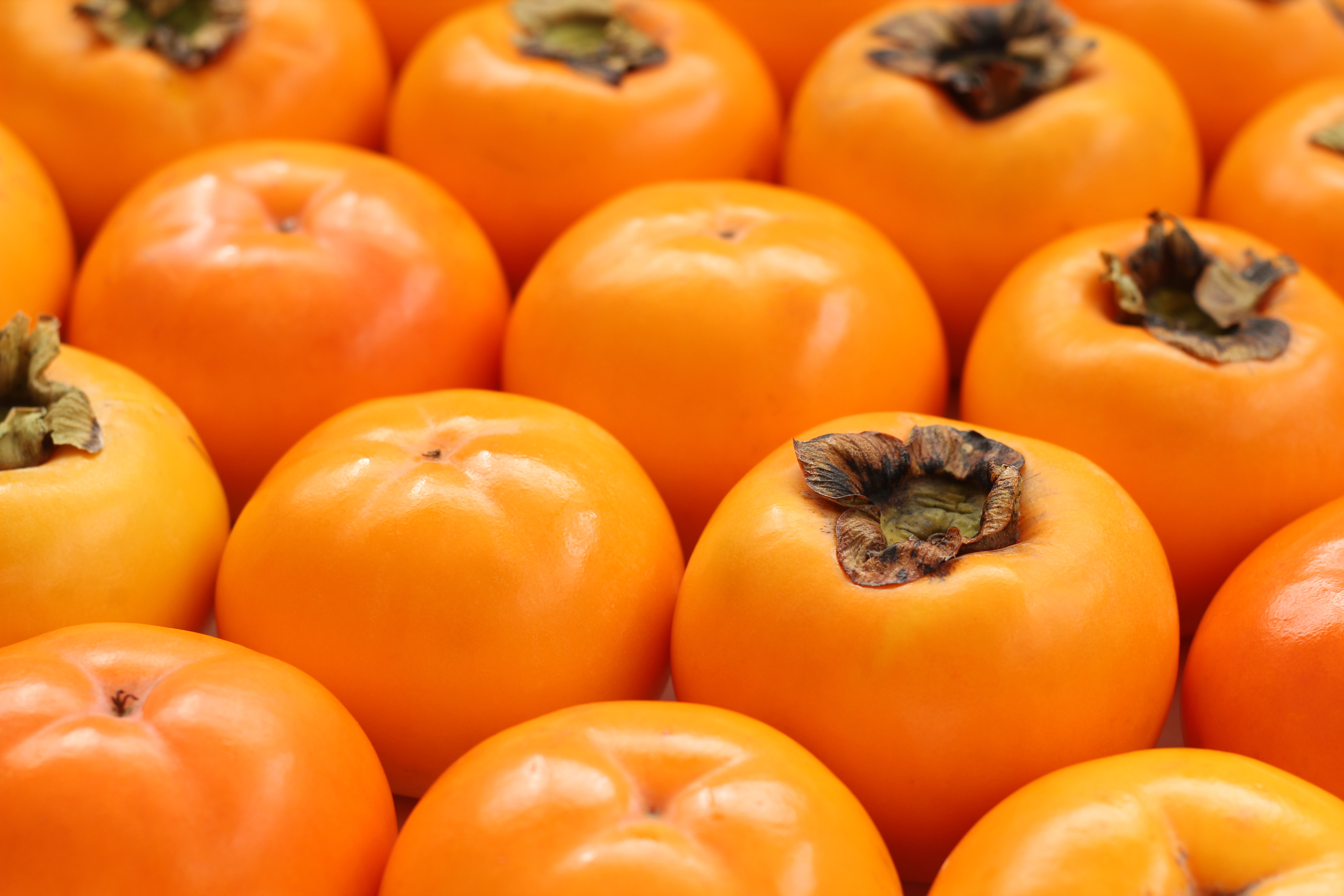 A,Lot,Of,Japanese,Mishirazu,Persimmons